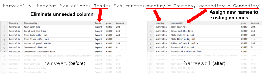 using select() and rename() to organize variables in a data set