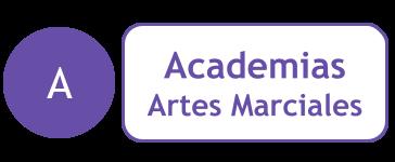 Academias Artes Marciales