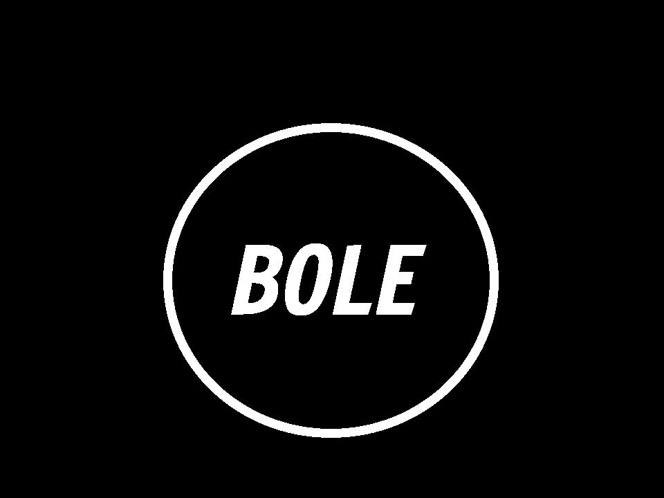 The BOLE logo