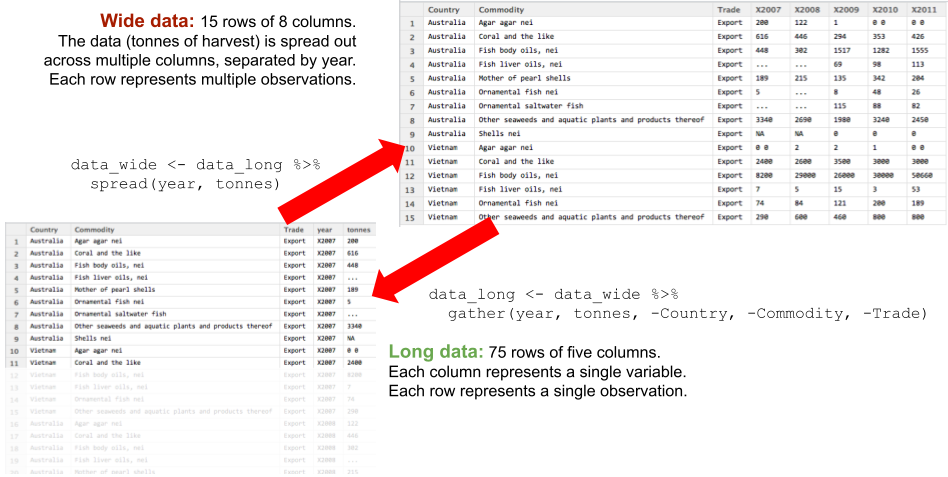 wide data to long data using gather() and spread()