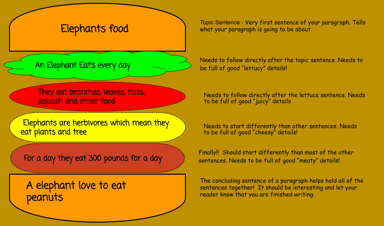 paragraph food and topic sentence