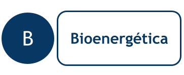 Bioenergética Medellín