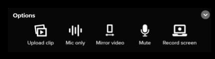 Screen capture of Flipgrid Options menu