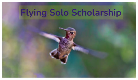 Image of a hummingbird flying with body in focus and wings blurred with the words Flying Solo Scholarship above the bird
