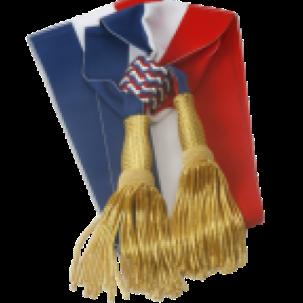 Personnalisation d'articles de mairie à Auxerre