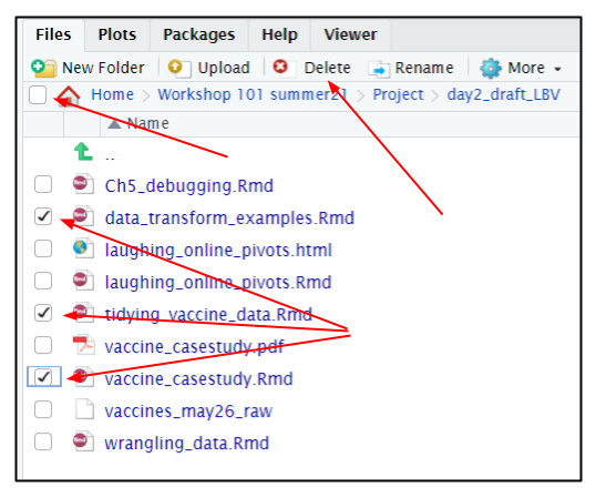 Screen capture of R server file browser with files selected for deletion