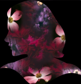 Collage Silhouette