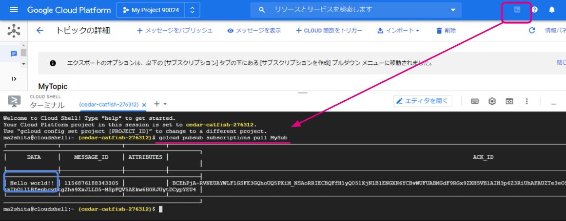 Google Drive / Funnel - Google Cloud Pub/Sub + Google Cloud Functions / funnel-pubsub-setting12.png