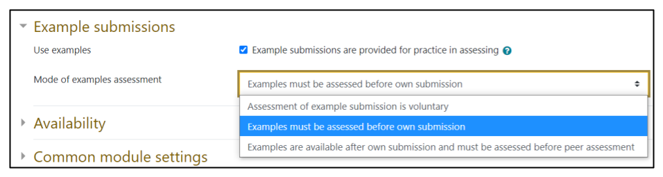 Screen capture of Moodle Workshop Example submissions settings