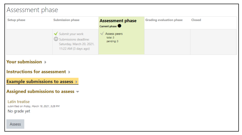 Screen capture of Moodle Workshop Assessment phase student view