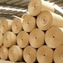 pasta papelera papel cartón, fabricación artículos papel cartón