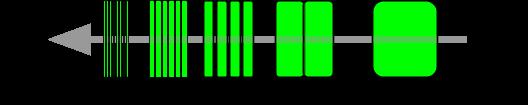image de la temporalité d'une story