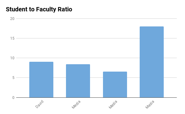 Davidson College student to faculty ratio